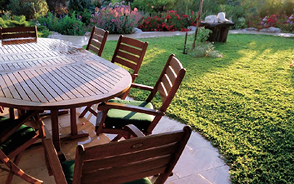 Comment aménager un talus au jardin ? | Blog Oleomac