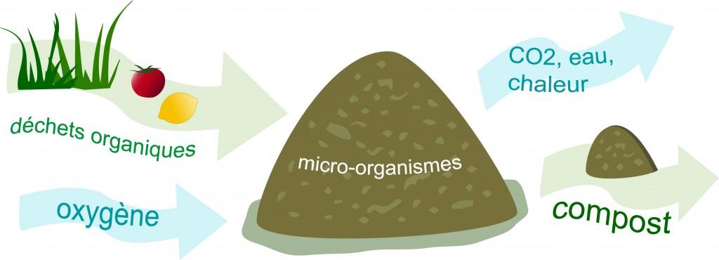 schema compostage