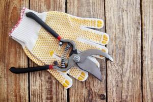 outils du jardin