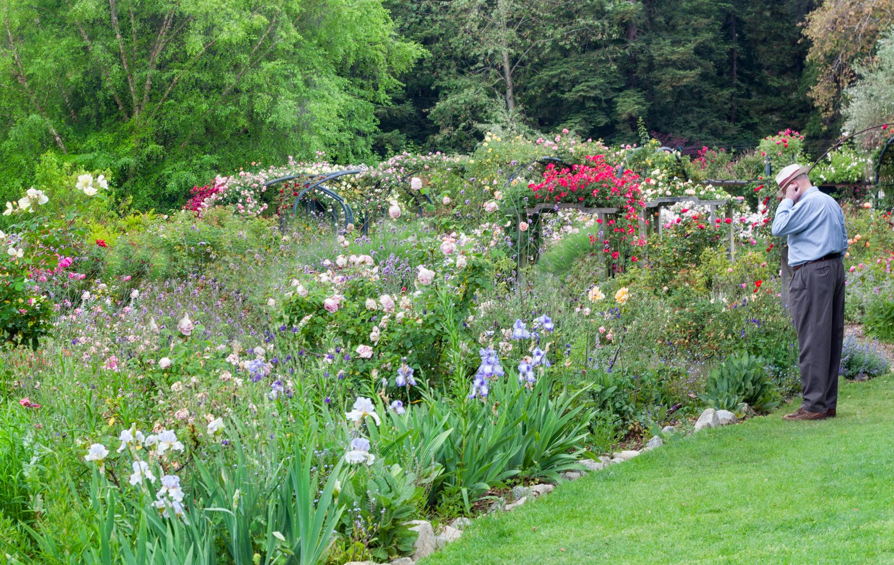 jardin du monde 1 focus sur le jardin l anglaise blog. Black Bedroom Furniture Sets. Home Design Ideas