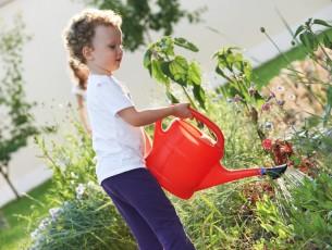 petit garçon arrosant les plantes du jardin