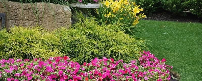 Jardiner sans se ruiner blog oleomac for Amenager un jardin fleuri
