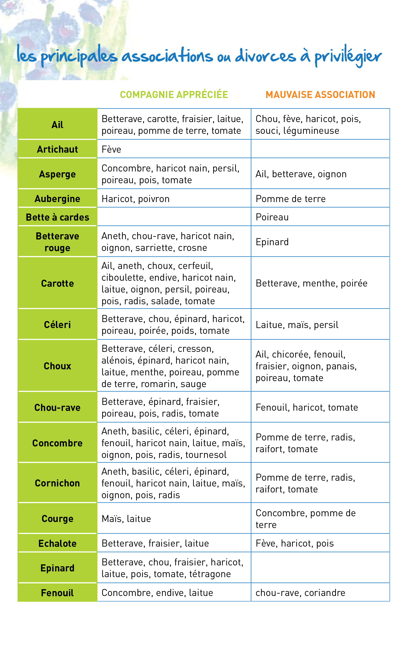 Association et divorce des plantes au potager 1 blog oleomac - Association de legumes au jardin potager ...