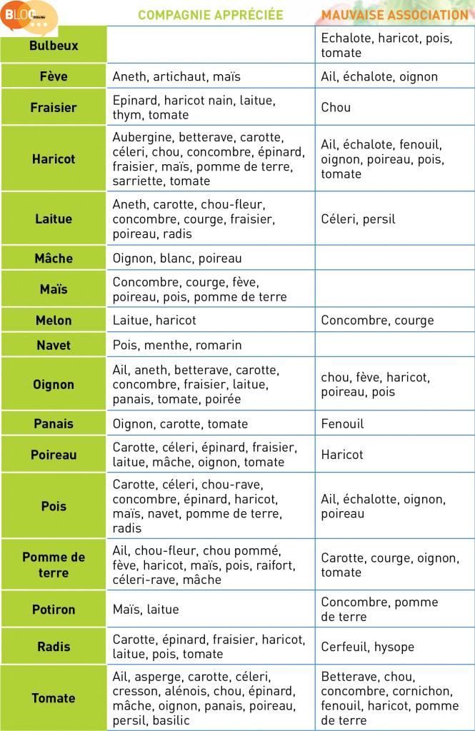 mariage et divorce des plantes au potager