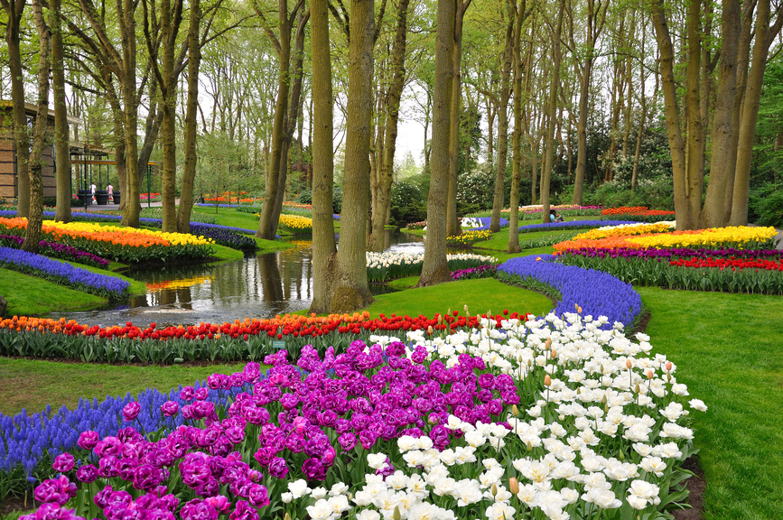 les jardins remarquables d europe 2 jardin de keukenhof aux pays bas blog oleomac. Black Bedroom Furniture Sets. Home Design Ideas