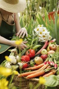 fruits-et-legumes-du-jardin