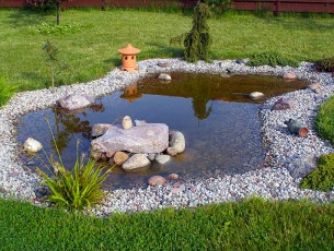 bassin-d'eau-japonais