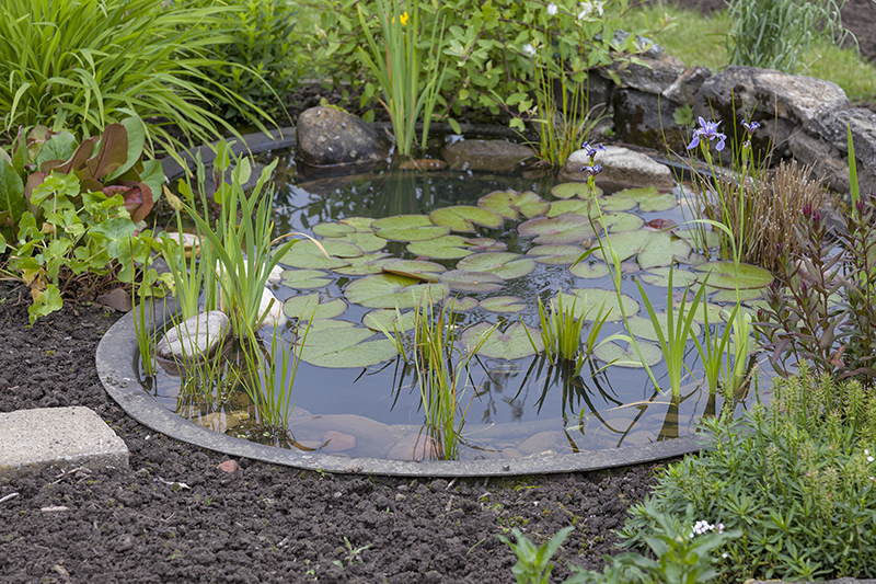 Les espaces d 39 eau le bassin blog oleomac for Bache bassin jardin