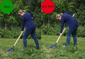Les bons gestes au jardin pour bien commencer blog oleomac - Comment utiliser le crottin de cheval au jardin ...