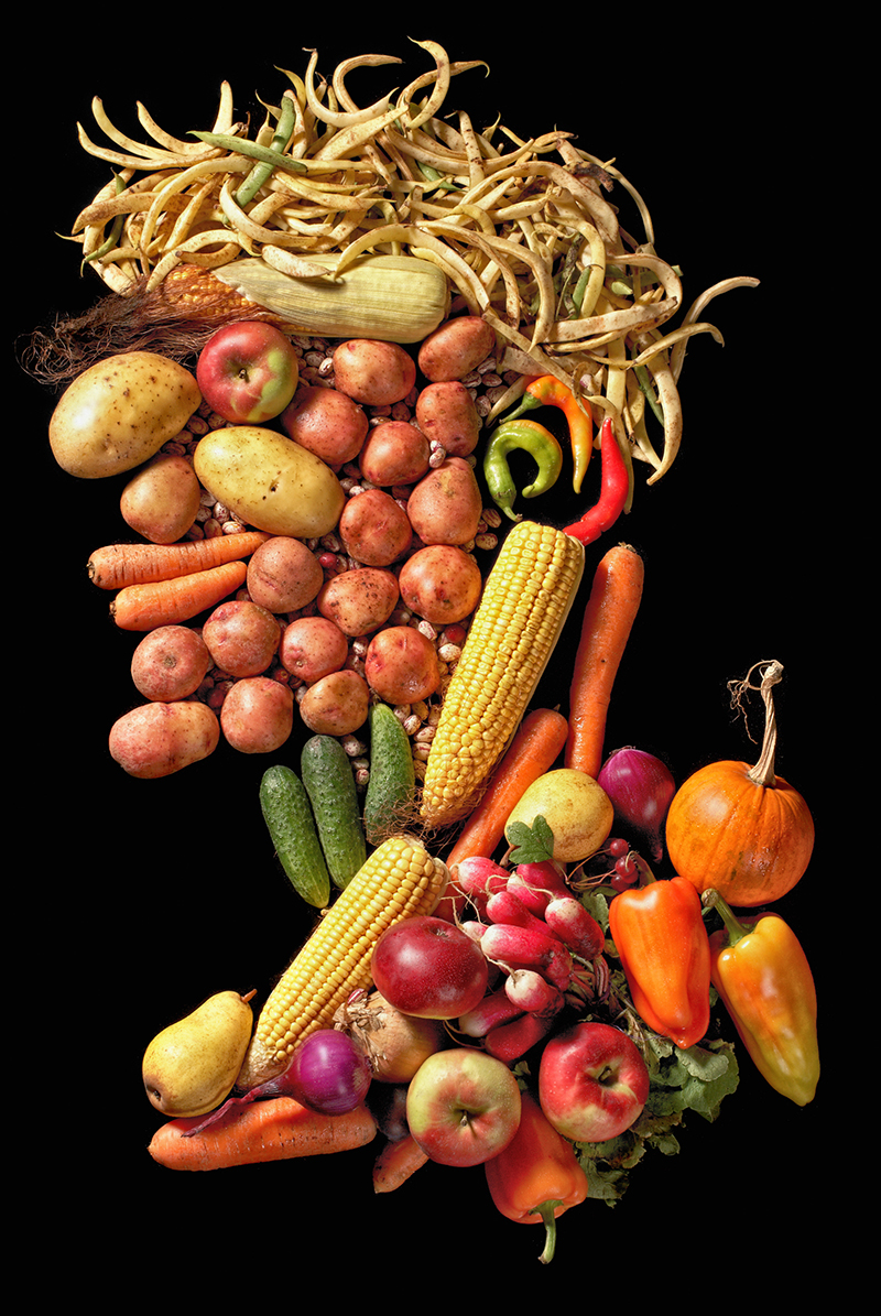 Arcimboldo Et Ses Fruits Blog Oleomac