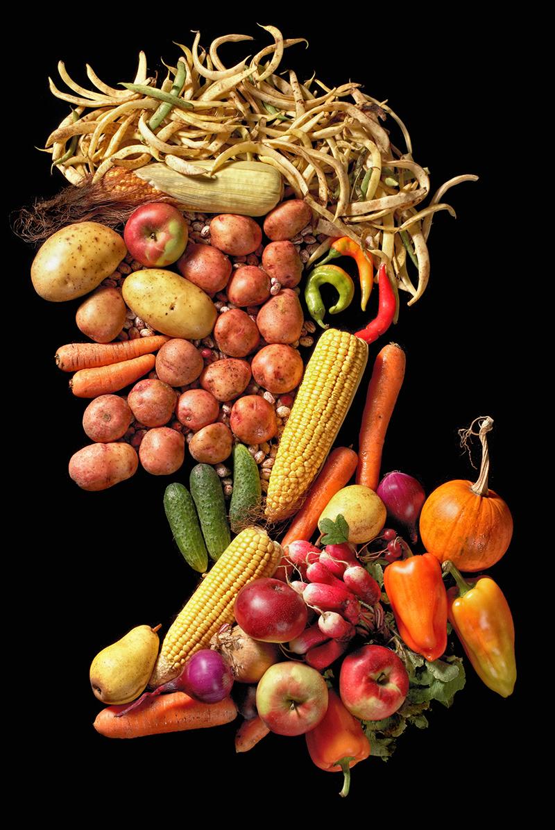 Arcimboldo et ses fruits blog oleomac - Printemps arcimboldo ...