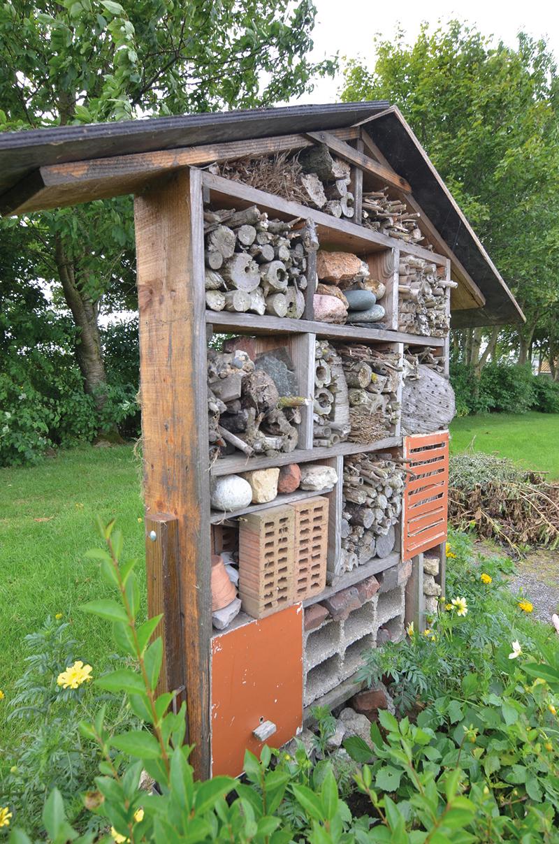 bien accueillir les auxiliaires du jardin les recycleurs. Black Bedroom Furniture Sets. Home Design Ideas
