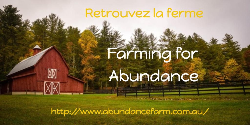 Farming For Abundance