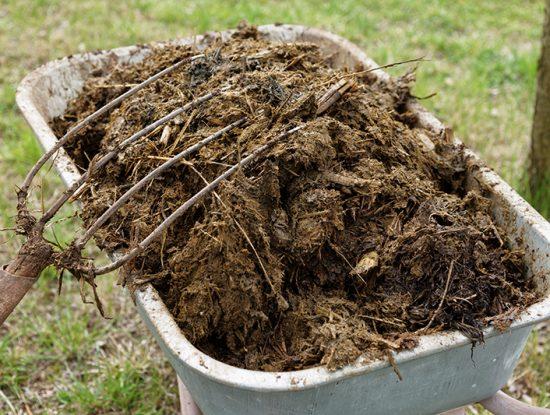 Blog oleomac le blog d 39 oleomac - Le fumier de cheval est il bon pour le jardin ...