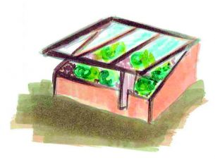 chassis protections de plantes