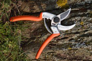 Secateur Oleomac arbre