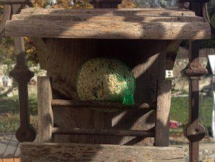 oiseau mangeoire boule graine