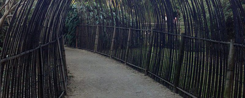 Bambouseraie Prafrance Anduze4