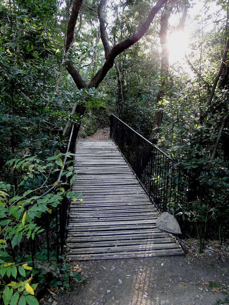 Pont de Chine © Domaine du Rayol