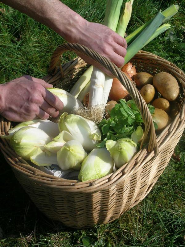 AUT_panier_legumes_endives_poireaux_mache_pommes de terre