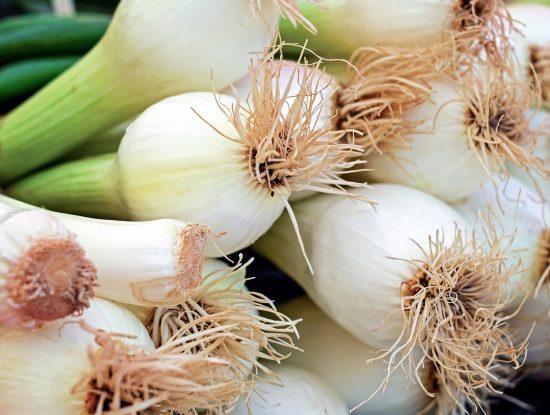 onion-1415814_1280