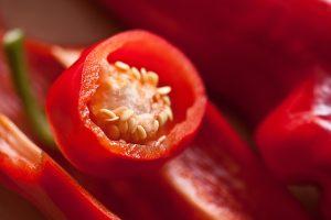 graines-poivron-jardinage