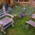 jardins-fauteuils-confinement