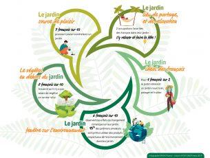 infographie Stats jardin_BLOG