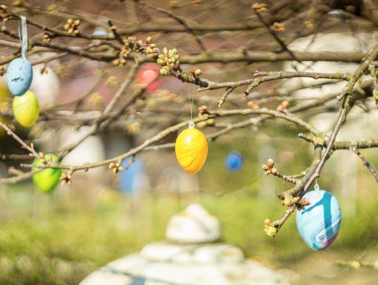 arbre_paques_jardin